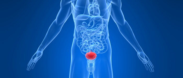 Лечение болезни мочевого пузыря